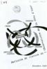 n.1 (1989) - URL